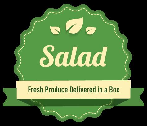 Salad-NS